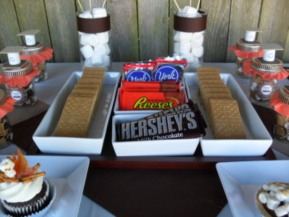 smores, cute smores, smores party, smores party idea, summer party ideas