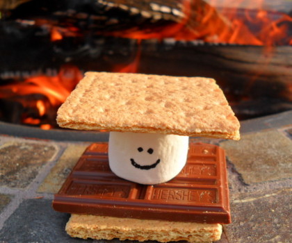 Smores Cute Party Idea Summer Ideas