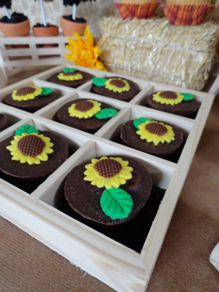 harvest party, sunflower brownie bites, cute food