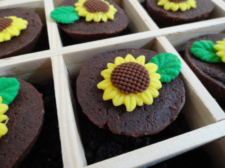 sunflower brownie bites, brownie bites, cute brownie bites, harvest party, fall party , autumn party
