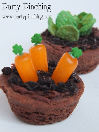 Mini Brownie Garden Recipe Tutorial With Mini Vegetables