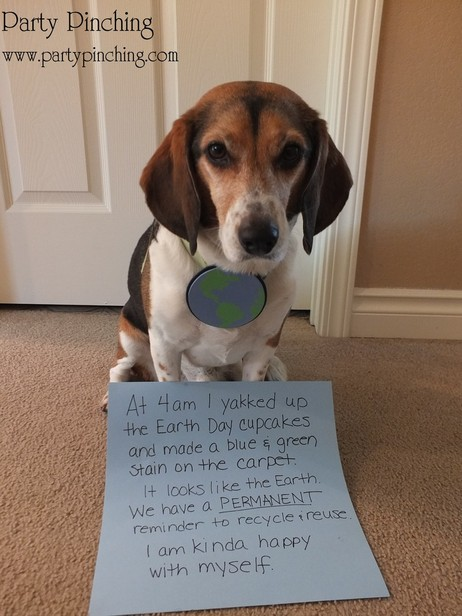 Earth Day cupcakes, beagle eats cupcake