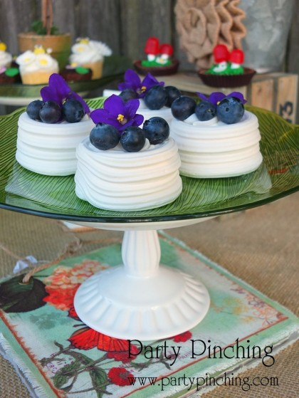blueberry meringues, greenhouse cake, garden cake, garden party ideas, garden party desserts