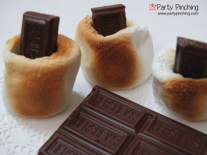 mallo bites, marshmallow and chocolate, not smores, roasted marshmallows, toasted marshmallows and chocolate party pinching