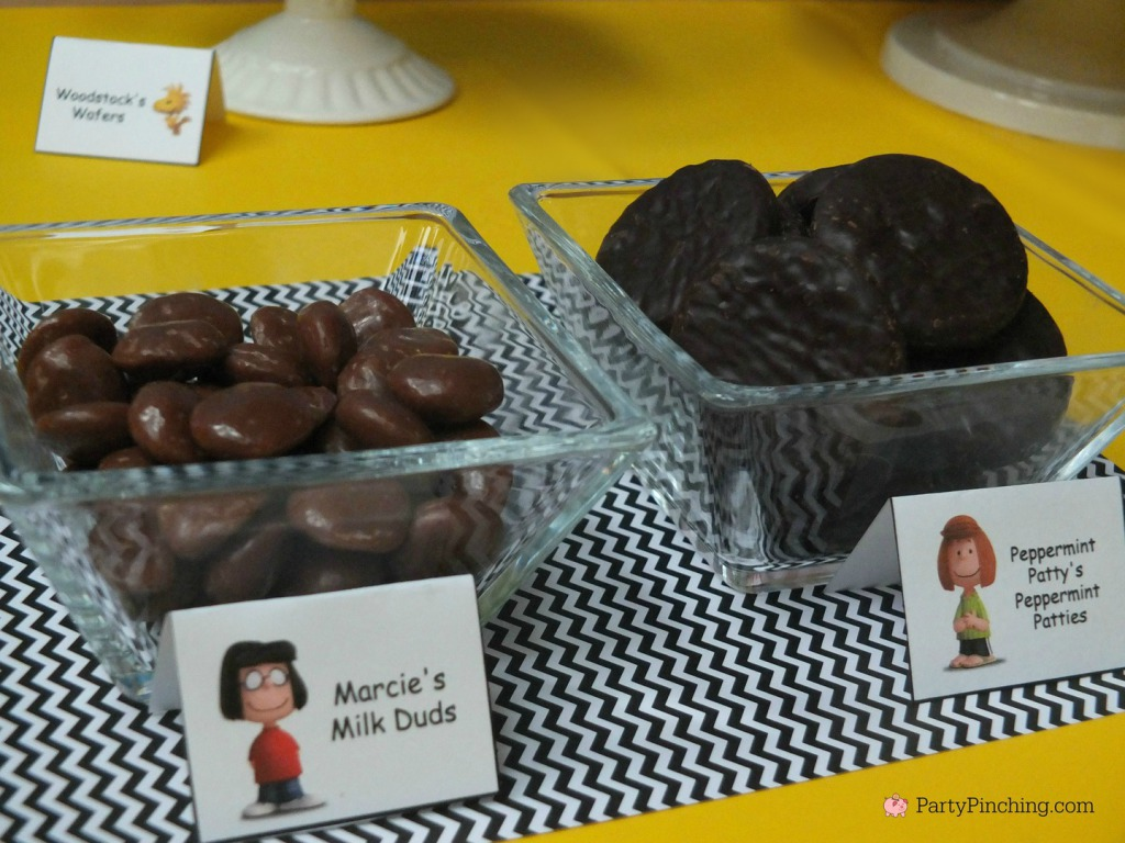 Marcie, Peppermint Patty, The Peanuts Movie, Peanuts movie party, Snoopy cookies, Charlie Brown party, Snoopy inspired party, Linus and Lucy, Blue Sky Studios, Party Pinching, Norene Cox