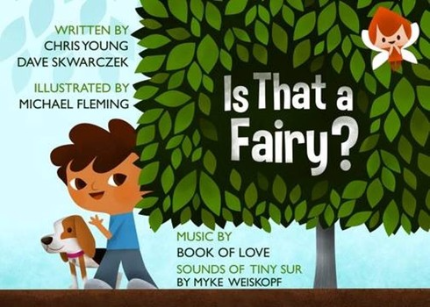Is that a Fairy, fairy children's book, chris young author